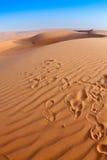 Desert dunes. Steps in desert, sand dunes Stock Photography