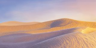 Desert dunes in a sunset. Gold and violet sand desert dunes in a sunset Royalty Free Illustration