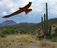 Desert Eagle. Fkying eagle over desert landscape Stock Photo