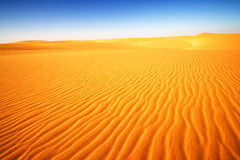 Desert in Egypt, Africa. Great Desert in Egypt, Africa Royalty Free Stock Photos