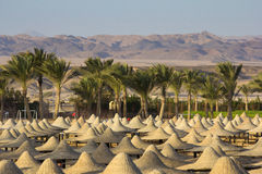 Desert in egypt in marsa alam Royalty Free Stock Images