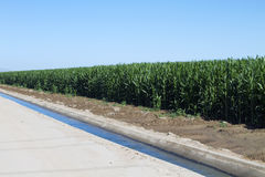 Desert Farming Agriculture Irrigation Canal Stock Images
