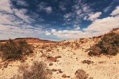 Desert Field Under Cloudy Sky Stock Photography