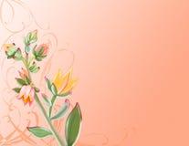Desert Flower. Illustration of a desert flower on a peach tone background vector illustration
