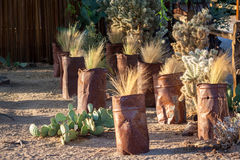 Desert flower pots in Twenty-Nine Palms, California. Cans with desert grass and some cactus in them Royalty Free Stock Image