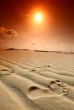 Desert footprint Royalty Free Stock Photography