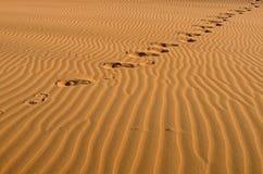 Desert footprints travel Royalty Free Stock Photo