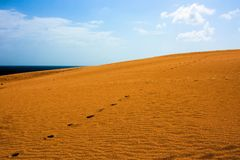 Desert with footsteps. In Corralejo Natural Park Royalty Free Stock Images