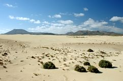 Desert of Fuerteventura in area Corallejo, Spain Royalty Free Stock Images