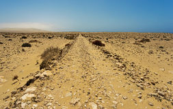 Desert of  Fuerteventura in area Costa Calma and Istmo de la Par Royalty Free Stock Image