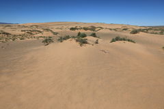 The Desert Gobi Royalty Free Stock Image