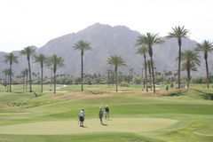 Desert Golf Course. Golf course at a desert resort with Palm Trees and mountains Stock Photography