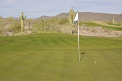 Desert Golf Green Stock Photo