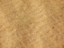 Desert Grains Background. Desert Grains Close Up Background Royalty Free Stock Photos