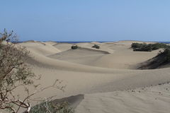 Desert in Gran Canaria. Island Royalty Free Stock Photography