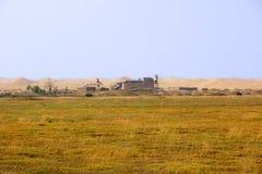Desert and grassland. China's gansu grassland and desert Stock Photos
