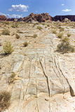 Desert Grooves in Nevada. Grooves in the desert floor in Nevada Stock Photos