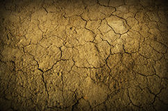 Desert Ground Stock Photos