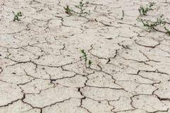 Mud dirt ground cracks Stock Photography