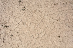 Mud dirt ground cracks Stock Photos