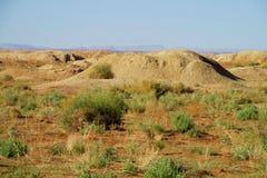 Desert ground whells Stock Photos