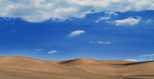 In desert during the heat period Royalty Free Stock Photos