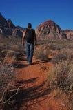 Desert hiker Royalty Free Stock Images