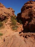 Desert. Hiking around stgeorge Royalty Free Stock Photo