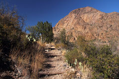 Desert Hiking Trail Stock Photography