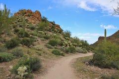 Desert Hiking Trail. Trail through a desert park near Phoenix, Arizona Royalty Free Stock Photo