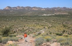 Desert Hiking Trail royalty free stock image