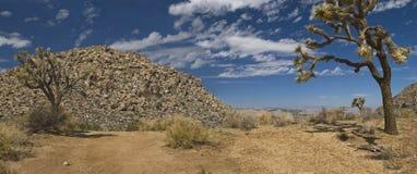 Desert Hills Stock Images