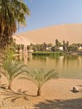 Desert of Ica, Peru. Oasis of Huacachina in the desert of Ica, Peru Stock Photography