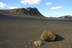 Desert in Iceland. During famous Landmannalaugar trek in Iceland you can see all kinds of nature phenomena in the summer Royalty Free Stock Photography