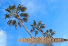 Desert Island. Three palm trees on a desert island against a deep blue sky Royalty Free Stock Photos