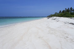 Desert island beach blue sky background royalty free stock photo