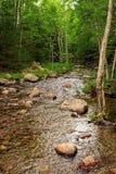 Desert Island Creek. In Acadia N.P. Maine stock photography