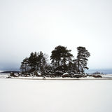 Desert island in Finsky gulf of the Baltic sea in winter Stock Photo
