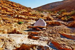 Desert in Israel Stock Photos