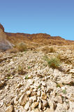 Desert in Israel. Rocky Hills of the Negev Desert in Israel Royalty Free Stock Image