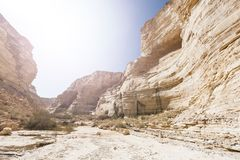 Desert in Israel at sunrise. Rocky hills of the Negev Desert in Israel at sunrise. Breathtaking landscape of the desert rock formations in the Southern Israel Royalty Free Stock Image