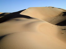 Desert IV Royalty Free Stock Photos