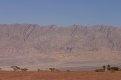Desert in Jordan. Landscape of desert and mountains in Jordan Stock Images