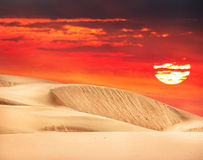 Desert in Kazakhstan. Desert with orange sky and big sun in Kazakhstan, Central Asia royalty free stock photography