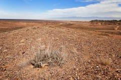Desert  in Kazakhstan Stock Photos