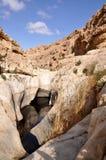 Desert lagune. Small lagune in the Negev desert, Israel Stock Photos