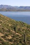 Desert lake hillside stock photos