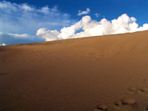Desert landscapce. Shot from a huge sanddune in the sahara Royalty Free Stock Photography