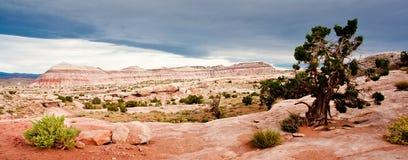 Desert Landscape. Panoramic Composition of Desert Landscape - Capitol Reef National Park royalty free stock photo