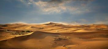 Desert landscape. Blue sky. UAE royalty free stock images
